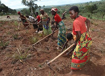 Burgeoning Burundi